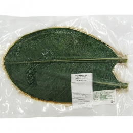 Parboiled Houba(Magnolia) Leaves for Decorations M size(32-34cm Length) 20p