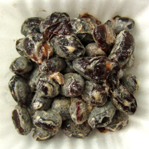 Hiruzen Japanese Black Soy Bean Natto 49.30gx2p